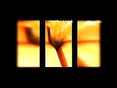 Eleven Seconds Compilation  #24